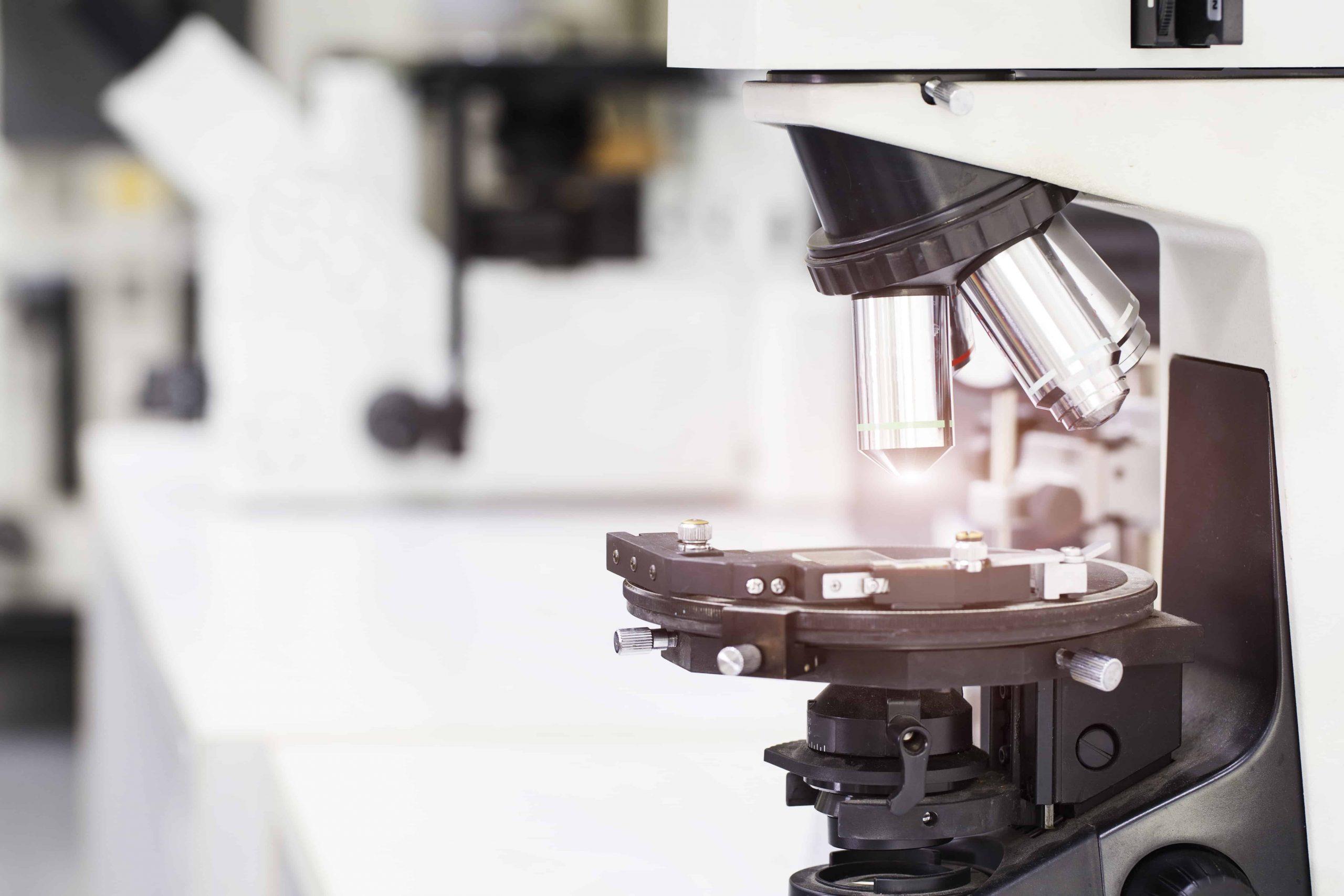 Mikroskop: Test & Empfehlungen (09/20)
